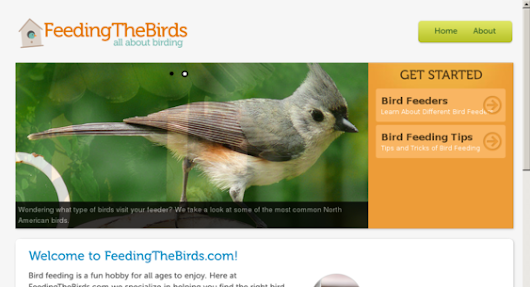 — Website For Sale on Flippa: Feeding the Birds - Excellent Starter Niche Site!