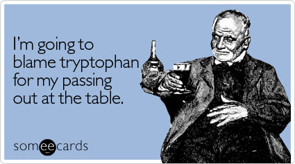 someecards.com - I'm going to blame tryptophan for my passing out at the table