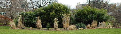 Monocot Border, Brooklyn Botanic Garden