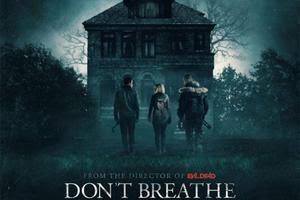 Image result for don't breathe
