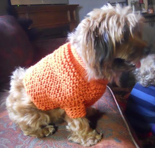 knitting 124