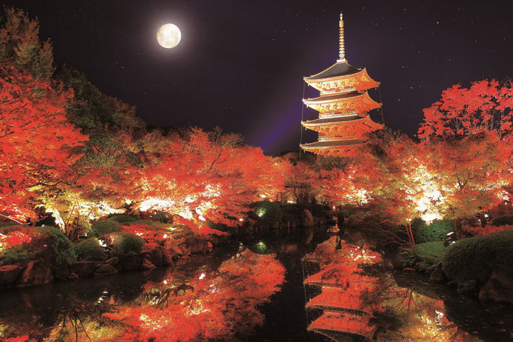 Epo 10 802 日本の風景 秋の東寺 五重塔京都 1000ピース エポック社 の
