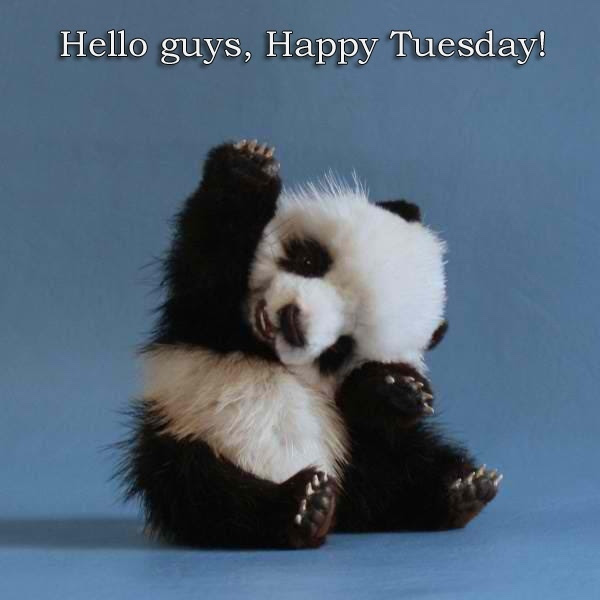 Hello Happy Tuesday Pictures Photos And Images For Facebook