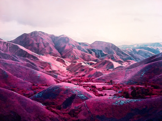 Pink Is the Colour of War. Photographer Richard Mosse Documents the Congolese Conflict With Troubling Poetic Shade