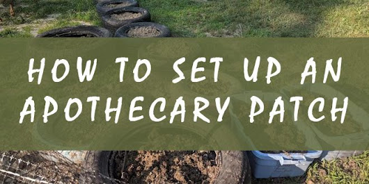 How to Set up an Apothecary Patch