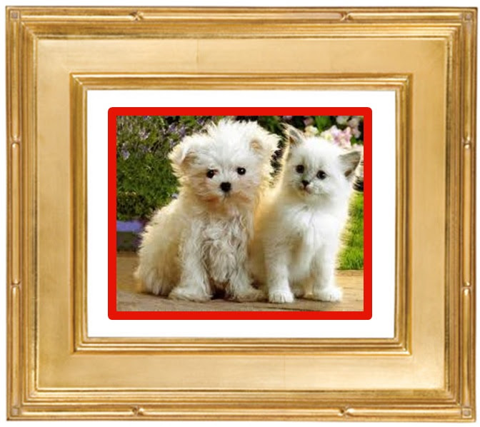 Picure Frames New England Picture Frames And Mouldings Woburn Ma