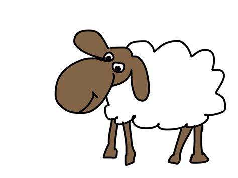 ilustrasi gratis domba gambar kartun wol hewan