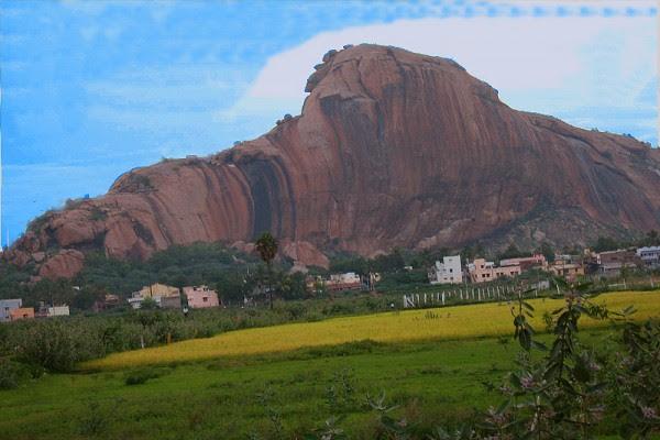 Yanaimalai-Elephant-Hill