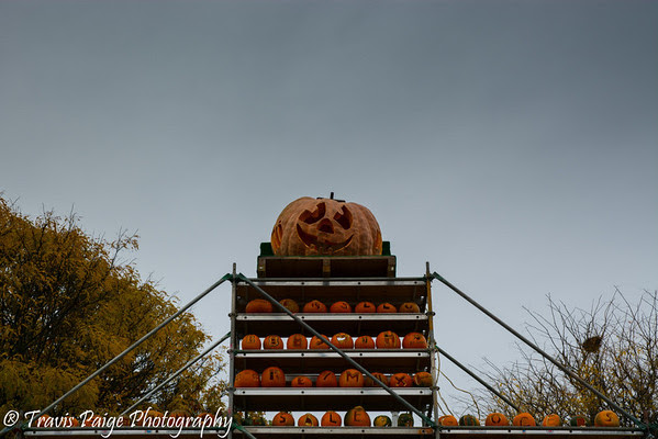 Travis Paige Photography: The Keene Pumpkin Festival