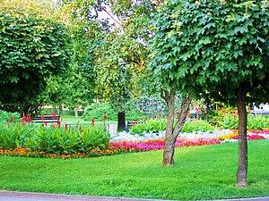 Park in Ropczyce