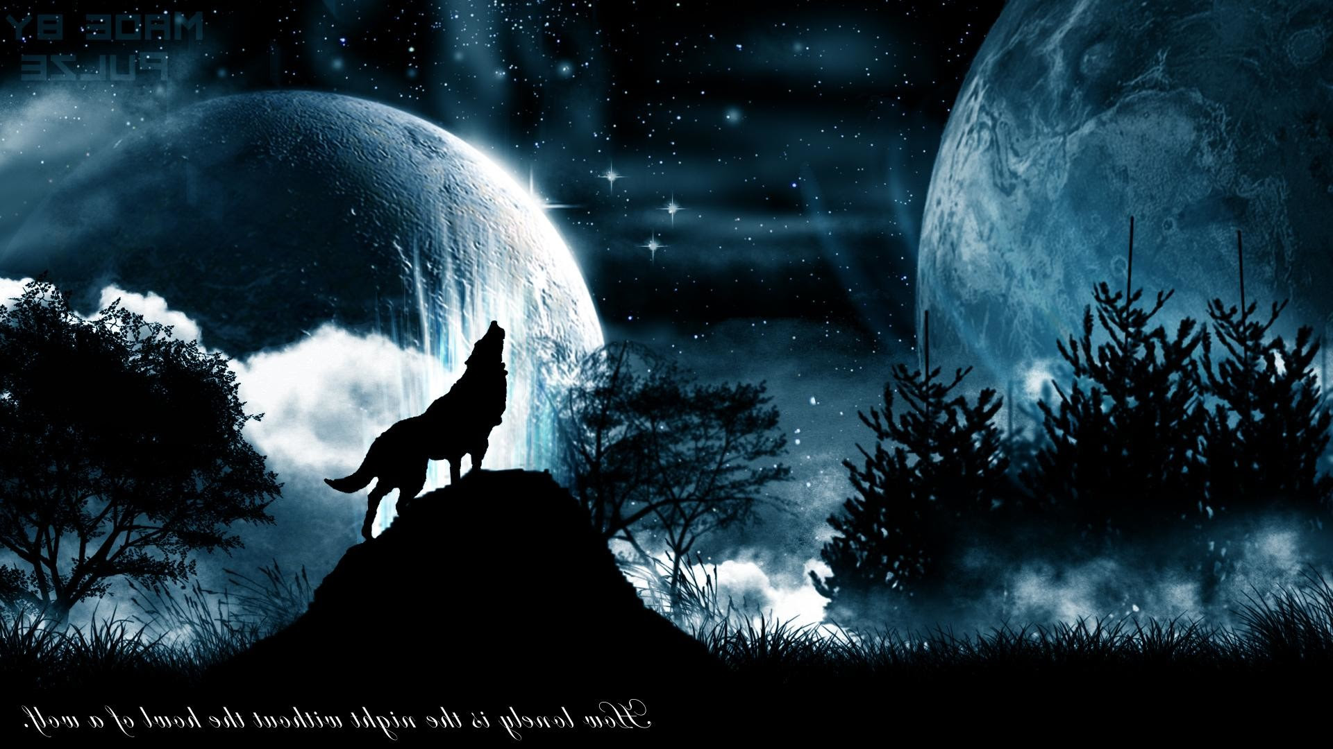 Wolf Howling Wallpaper 67 Images