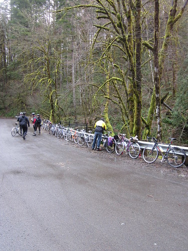 Bikes lined up at the Snooseville control