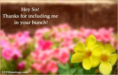 Hey Sis! Free Sister eCards, Greeting Cards   123 Greetings