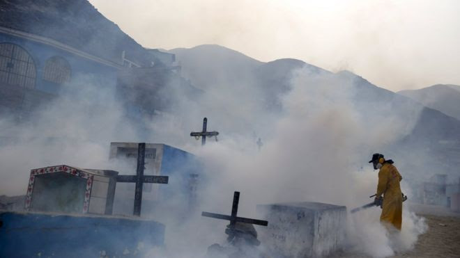 A health worker fumigates a grave yard in the outskirts of Lima, Peru.