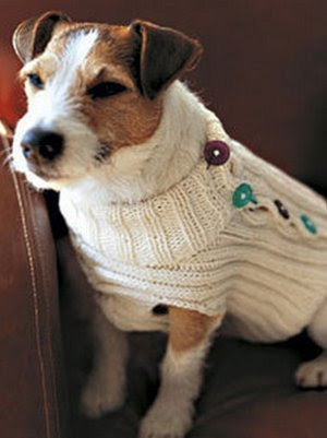 Wishbone's Button-Up Sweater