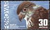 Merlin Falco columbarius