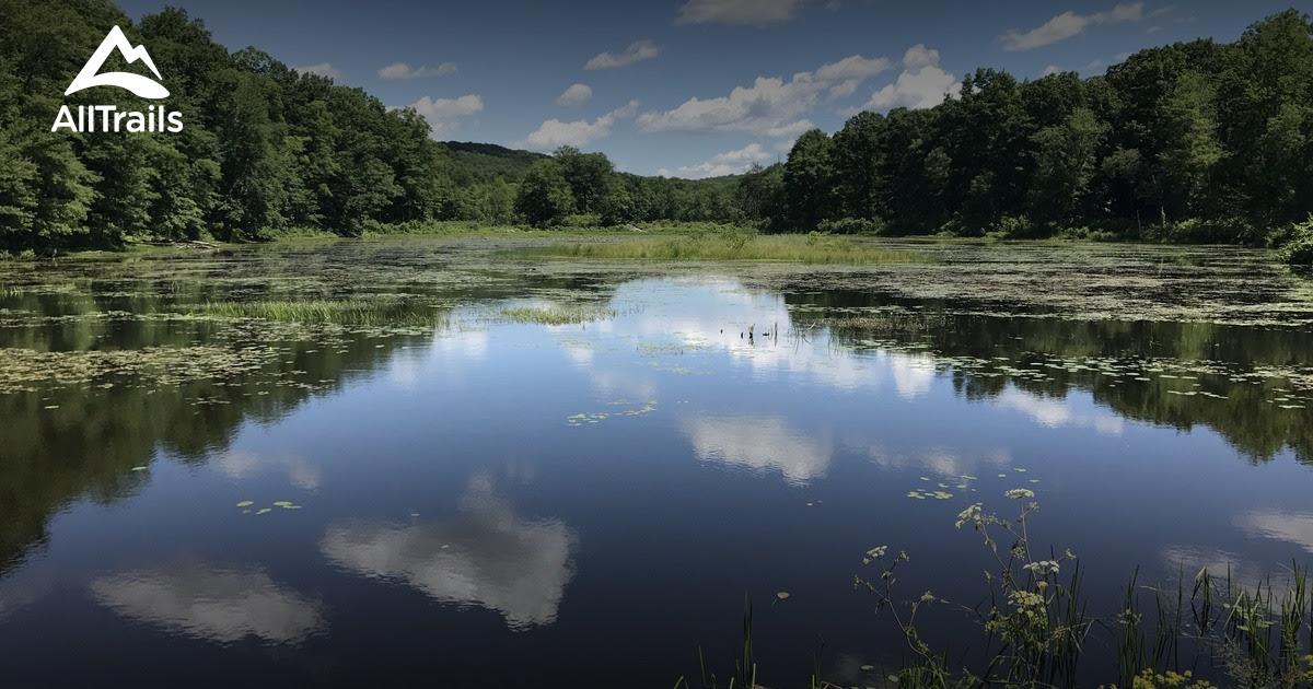 Best Trails In Rockaway River State Wildlife Management