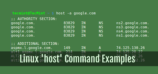 Useful 'host' Command Examples for Querying DNS Lookups