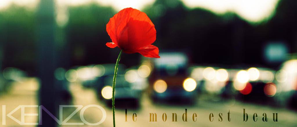 4bd7b193 BEM-VINDO AO E.S.P FASHION BLOG BRASIL: Le Monde Est Beau de Kenzo ...