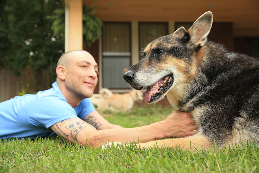Cloning gives man's best friend a second chance | Toronto Star