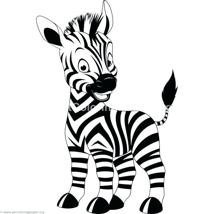 Cute Baby Zebra Drawing at GetDrawings | Free download