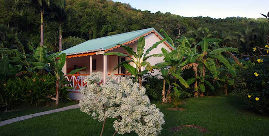 Bungalow Hibiscus - Location-Bungalow-Guadeloupe.fr
