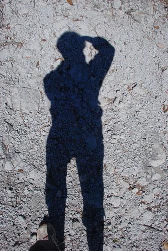 February shadow