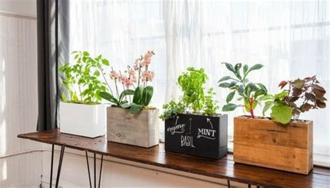 Decoration tips draw for the windowsill ? inspiration for