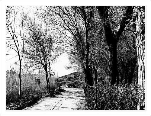 camino a la laguna, camino al más allá