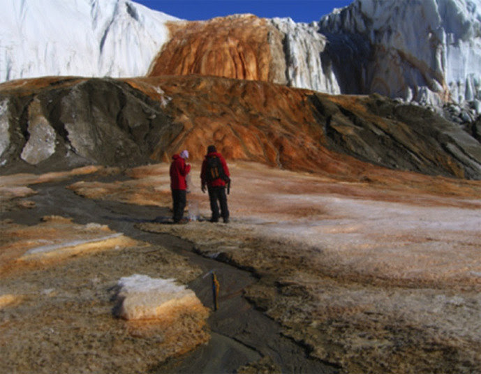 Em 2004, a equipe do microbiologista Jill Mikucki conseguiu uma amostra da ocorrência e começou uma série de estudos para tentar desvendar o que acontecia no meio das geleiras