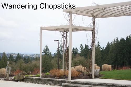 13 Hawks View Cellars - Sherwood - Oregon 3
