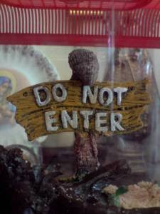 DO NOT ENTER!