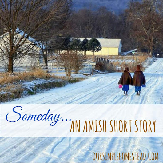 Amish Short Story - A Valentine's Day Present for Emma