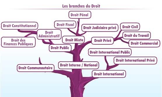 Exemple D Introduction De Commentaire De Texte En Droit ...