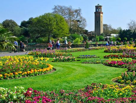 Sam aldridge google for Xd garden design