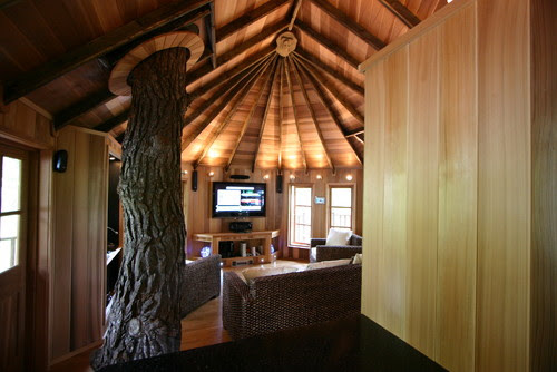 Blue Forest Tree House eclectic living room