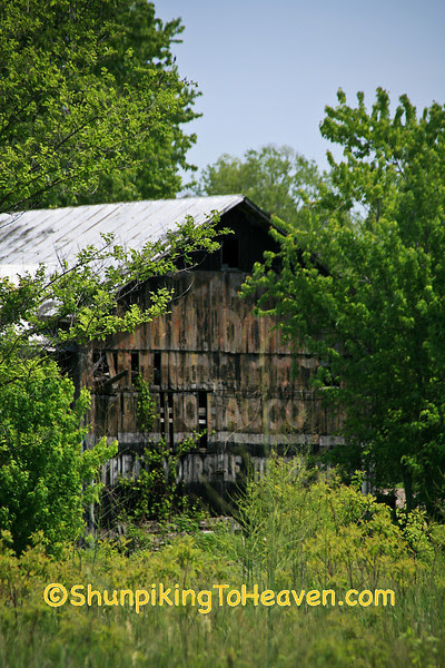 Old Barn with Faded Mail Pouch Tobacco Sign, Van Buren County, Michigan
