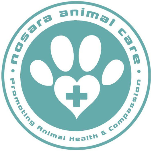 Supporting Nosara Animal Care