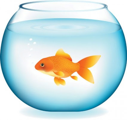 goldfish%20clipart%20