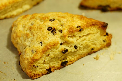 Classic Currant Scones Just Out Of The Oven by Eve Fox, Garden of Eating blog