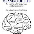 Positive Thinking And The Meaning Of Life: : Marcus Freestone: 9781530591350: Books