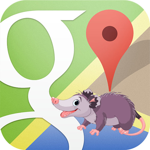 Google Possum Algorithm Update and its Effects on Local SEO