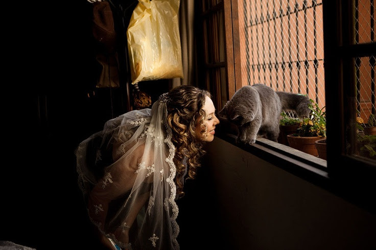 Bride and cat by Esteban Nakano (Peru)