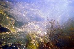 Cliff - Kodak