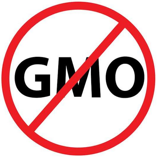 400 Companies That DO NOT Use GMOs in Their Products