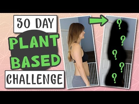 30 Day Plant Based Challenge (BEFORE and AFTER)
