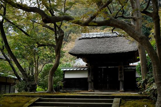20111014-_DSC0958enkakuji