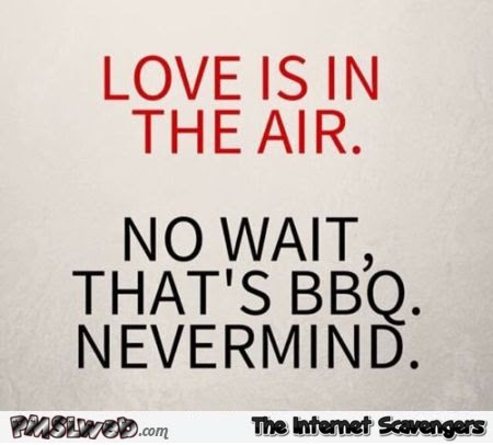 Love Is In The Air Funny Quote Pmslweb