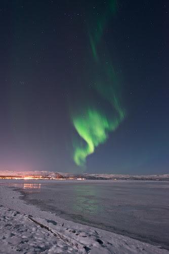 Alta lights