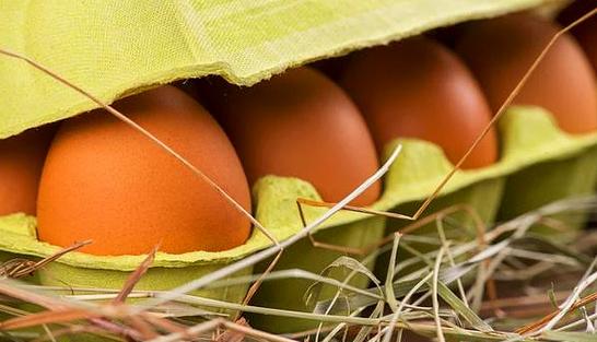 Kahverengi Yumurtaların Daha Sağlıklı Olması